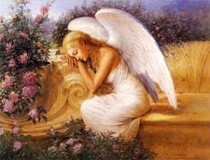Angel in My Heart
