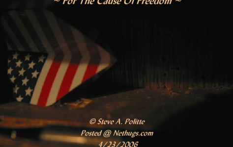 For The Cause Of Freedom « NetHugs.com