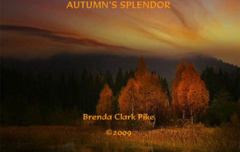autumns-splendor