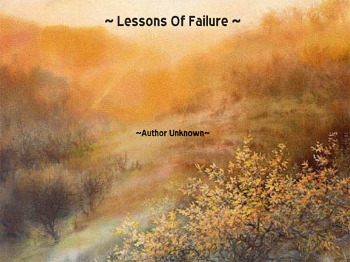 Lessons of Failure