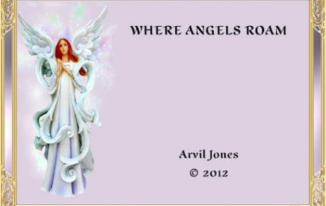 where-angels-roam