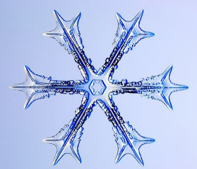 the_beauty_of_snowflakes_up_close_640_02