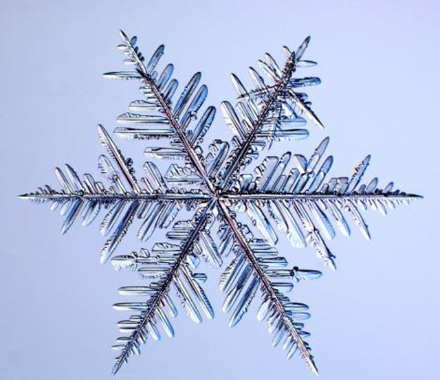 the_beauty_of_snowflakes_up_close_640_07