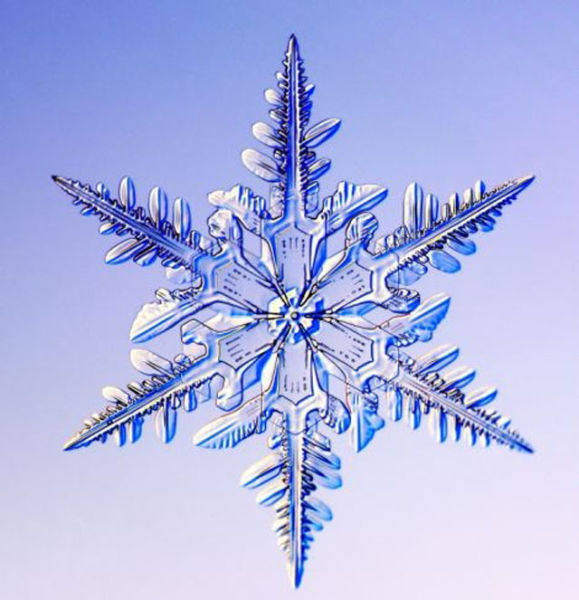 the_beauty_of_snowflakes_up_close_640_08