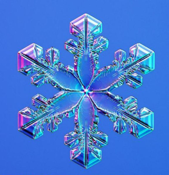 the_beauty_of_snowflakes_up_close_640_09
