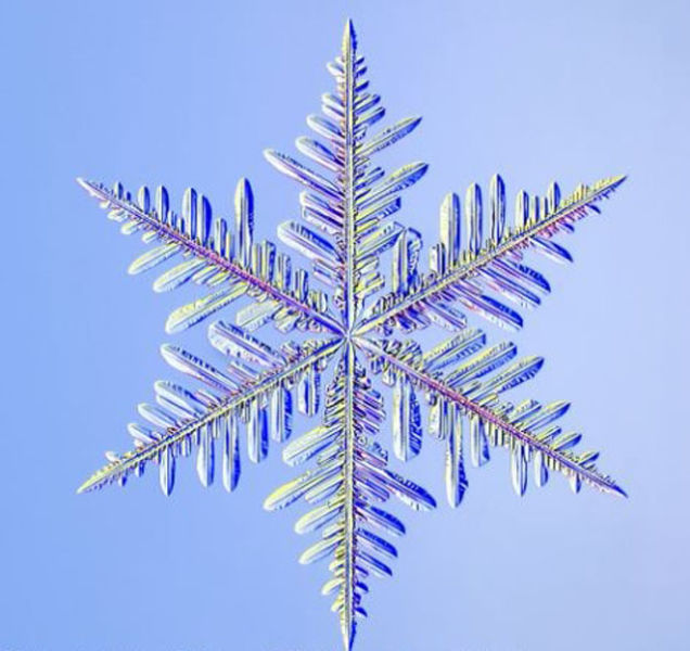 the_beauty_of_snowflakes_up_close_640_13