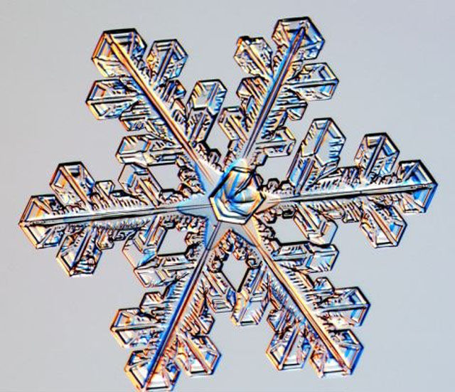the_beauty_of_snowflakes_up_close_640_17