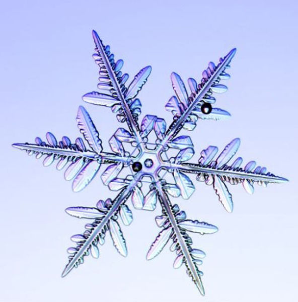 the_beauty_of_snowflakes_up_close_640_21