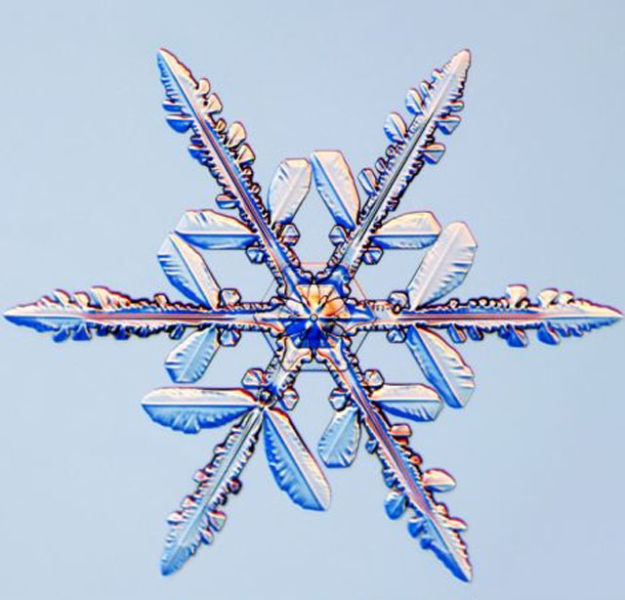 the_beauty_of_snowflakes_up_close_640_22
