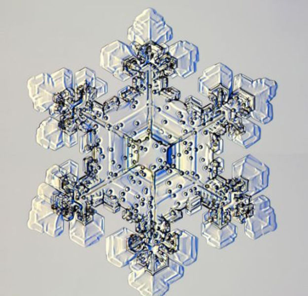the_beauty_of_snowflakes_up_close_640_23
