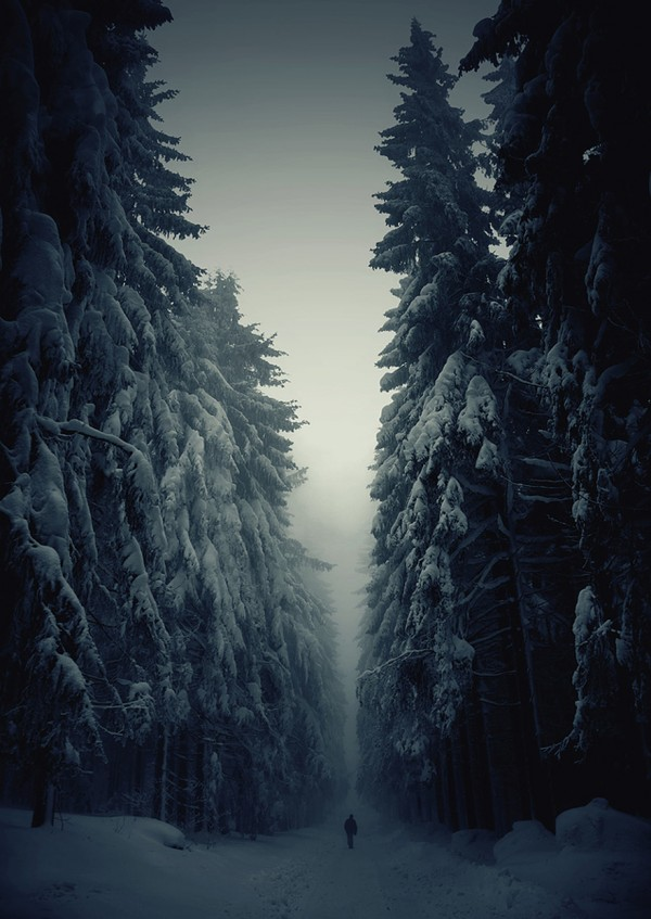 Breathtaking Winter Landscapes (20 pics)