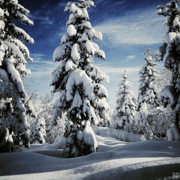 winter-landscapes-13-600x602