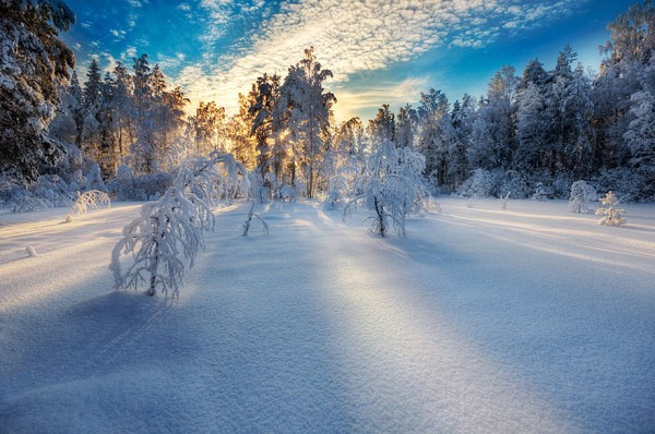 winter-landscapes-2-600x398