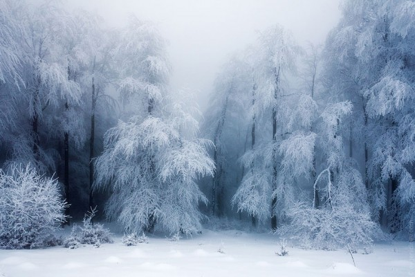 winter-landscapes-20-600x400