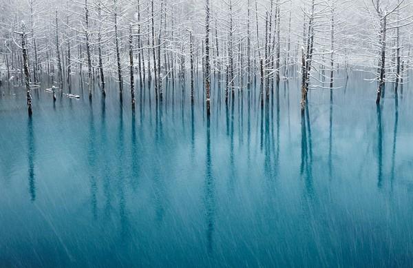 winter-landscapes-4-600x389