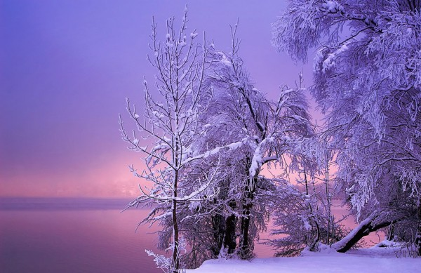 winter-landscapes-8-600x389