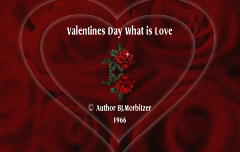 Valentines Day What Is Love