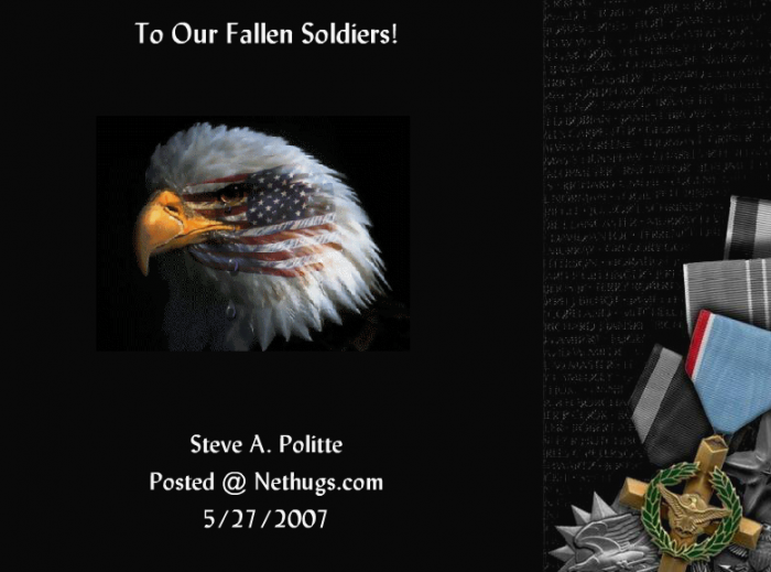 To Our Fallen Soldiers