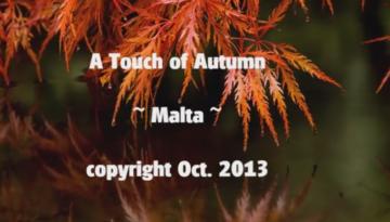 A Touch of Autumn « NetHugs.com – Inspirational eCards