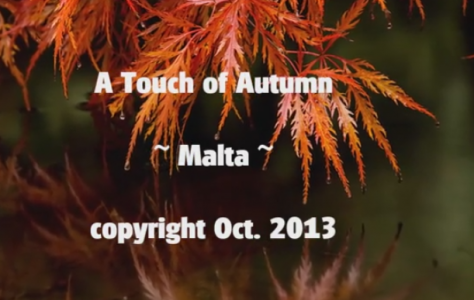 A Touch of Autumn « NetHugs.com – Inspirational eCards