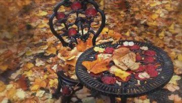 Autumn - Ryan Stewart thumbnail