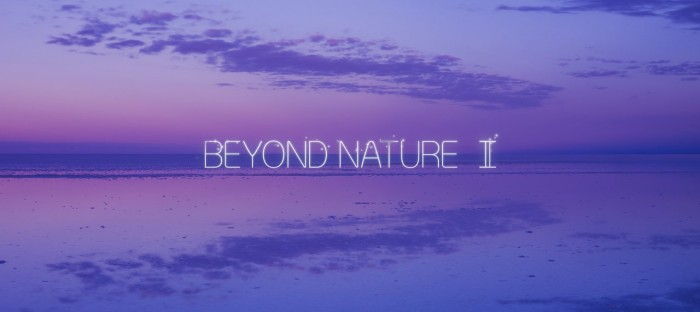 Beyond Nature II