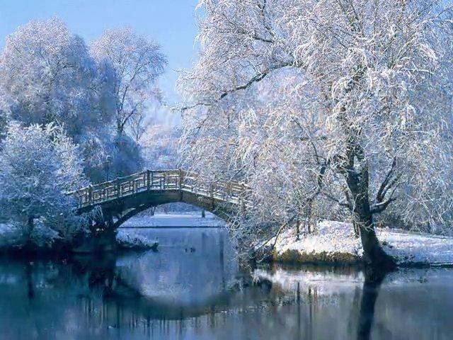 Winter's Hope