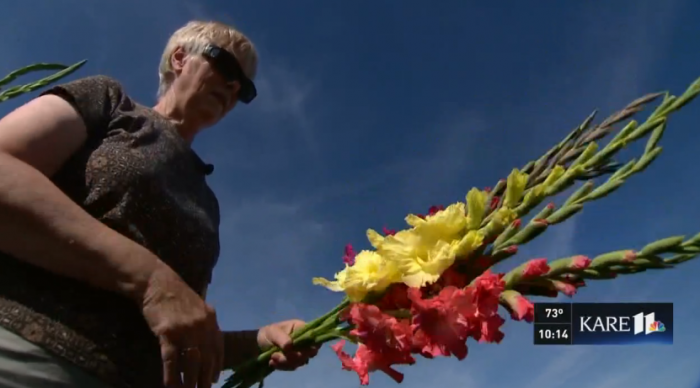 Minnesota Couple Brings Joy with 'Glads'