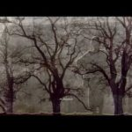 Mr. Lonely – Bobby Vinton
