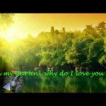 Why Do I Love You So – Johnny Tillotson