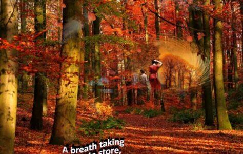 Birth of Another Autumn Season
