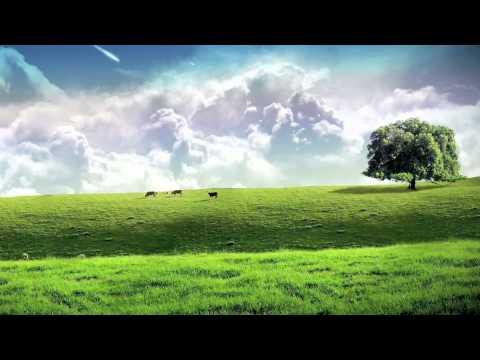 Green Green Grass of Home – Elvis Presley