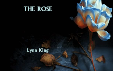 the-rose