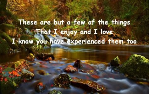 Things-I-Enjoy
