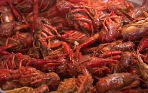 The-Crawfish-Shack-Texas-Country-Reporter