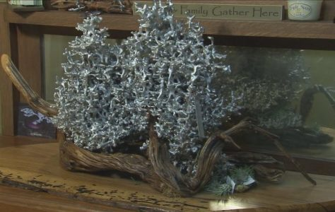 Anthill-Sculptures-Texas-Country-Reporter
