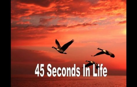 45 Secons In Life