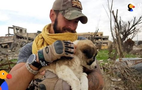 Soldier Saves Puppy Then Realizes He Can't Live Without Her