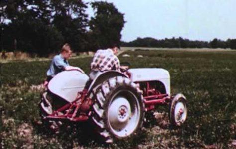 American Farmer (1954)