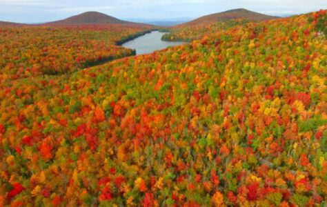 This is Fall Foliage in Groton Vermont