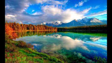 The Splendor Of Nature