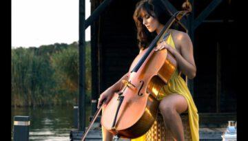 She's The One – Amadeus Electric Quartet
