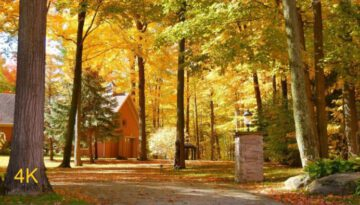 Beautiful Autumn Colors Canadian Countryside
